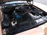 1979 PONTIAC FIREBIRD FORMULA 2 DOOR COUPE - Engine - 157902