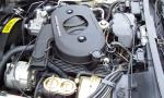 1982 CHEVROLET CORVETTE COUPE - Engine - 15994