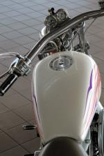 1998 HARLEY-DAVIDSON SOFTAIL CUSTOM MOTORCYCLE - Side Profile - 16071