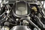 1979 PONTIAC FIREBIRD TRANS AM 10TH ANNIVERSARY COUPE - Engine - 161402