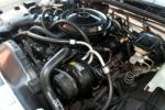 1987 CHEVROLET MONTE CARLO SS 2 DOOR AERO COUPE - Engine - 161921