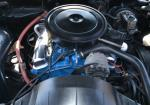 1979 PONTIAC FIREBIRD FORMULA 2 DOOR COUPE - Engine - 162410