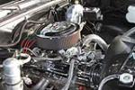 1979 CHEVROLET C-10 CUSTOM PICKUP - Engine - 170226