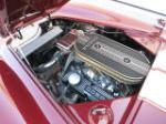 1965 SHELBY COBRA ROADSTER RE-CREATION - Engine - 170863