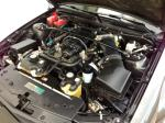 2009 SHELBY GT500 FASTBACK - Engine - 174588