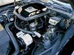 1981 PONTIAC TRANS AM - Engine - 181383