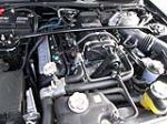 2007 SHELBY GT500 40TH ANNIVERSARY - Engine - 182385