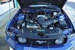 2008 SALEEN MUSTANG S302 DAN GURNEY EDITION - Engine - 189941