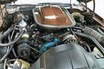 1977 PONTIAC FIREBIRD TRANS AM  - Engine - 190124