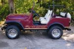 1994 JEEP ISLANDER - Side Profile - 22644