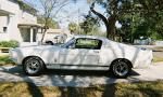1967 SHELBY GT500 FASTBACK - Side Profile - 39825