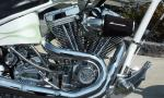 2005 LEGENDS WILD CHILD 250 MOTORCYCLE - Engine - 40089
