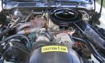 1980 PONTIAC FIREBIRD TRANS AM INDY PACE CAR - Engine - 40113