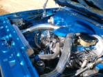1981 CHEVROLET CUSTOM DELUXE PICKUP - Engine - 43825