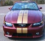 2004 FORD MUSTANG ROUSH 440A - Misc 1 - 49642