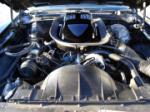 1976 PONTIAC FIREBIRD TRANS AM COUPE - Engine - 64024