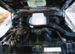 1976 PONTIAC FIREBIRD TRANS AM HARDTOP COUPE - Engine - 79168