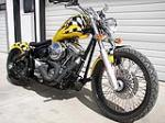 2008 BACKROAD CHOPPERS STREET FIGHTER SOFTTAIL   - Front 3/4 - 79851