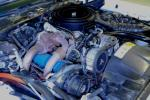 1981 PONTIAC FIREBIRD TRANS AM COUPE - Engine - 81431