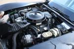 1978 CHEVROLET CORVETTE PACE CAR COUPE - Engine - 82045