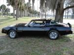 1976 PONTIAC TRANS AM 2 DOOR COUPE - Side Profile - 89291