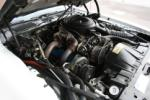1981 PONTIAC FIREBIRD TRANS AM COUPE - Engine - 91079