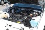 1984 PONTIAC FIREBIRD TRANS AM 15TH ANNIVERSARY EDITION - Engine - 91166