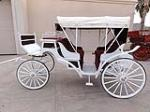 0 BUGGY ROBERT 2-SEAT VIS-A-VIS CARRIAGE - Side Profile - 97742